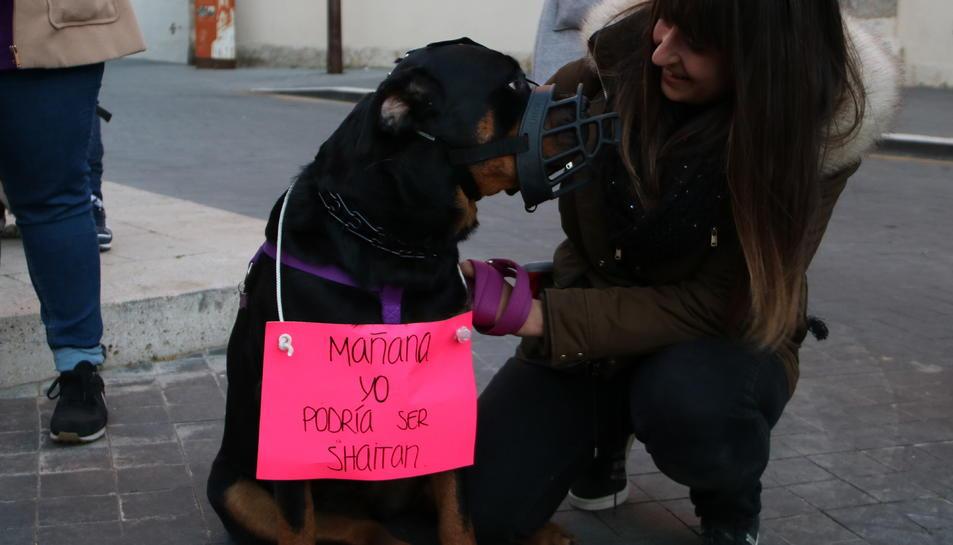 Una manifestat i el seu gos amb un cartell reivindicatiu en la protesta per la mort d'un rottweiler abatut per la Policia Local de Calafell.
