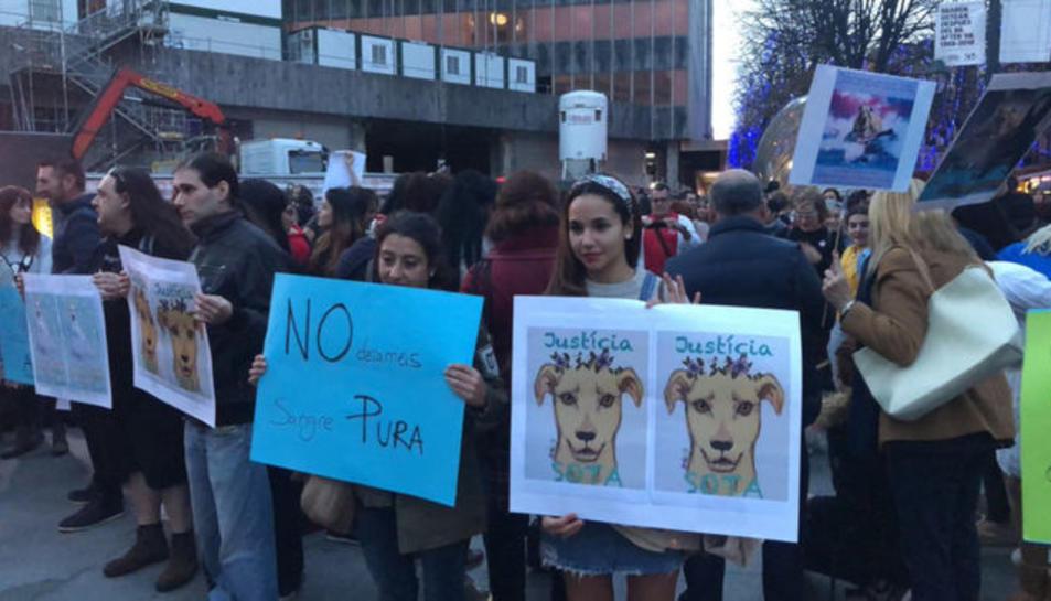Imatge d'arxiu d'uns manifestants demanant justícia per la gossa Sota abatuda a Barcelona per la policia