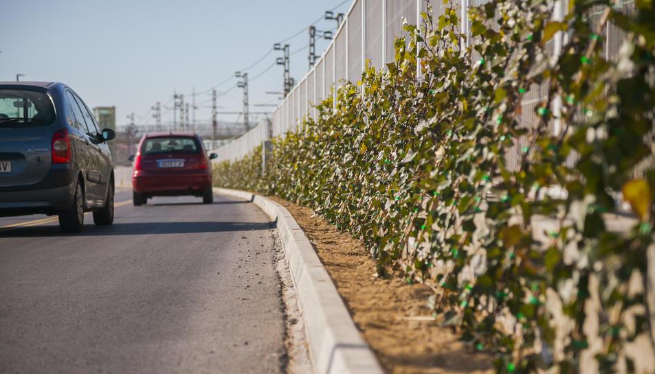 Unes plantes facilitaran separar visualment el passeig de la zona ferroviària.