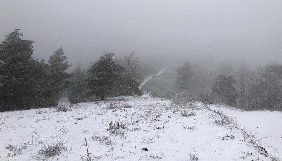 Imatge del municipi de Prades nevat.