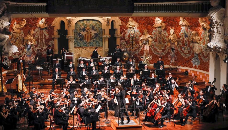 imatge de l'Orquestra Simfònica Camera Musicae.