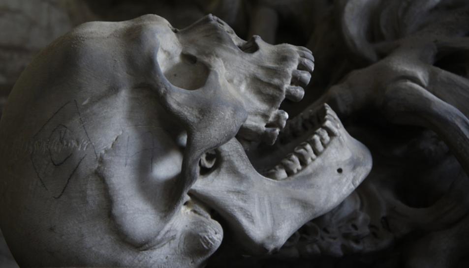 Imatge d'arxiu de la rèplica d'un crani humà.
