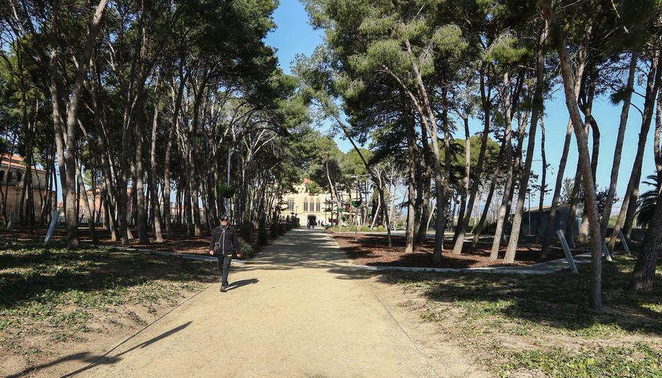 Portes obertes del Castell de Vila-seca