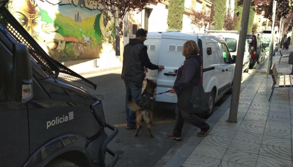 La unitat canina dels Mossos d'Esquadra participa en l'operatiu policial.