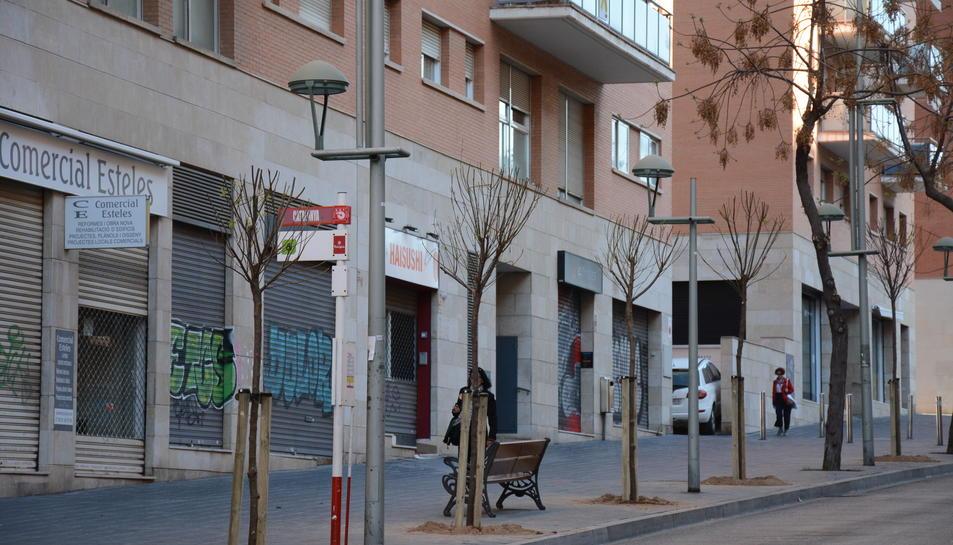 Imatge dels arbres del carrer Rovira i Virgili.