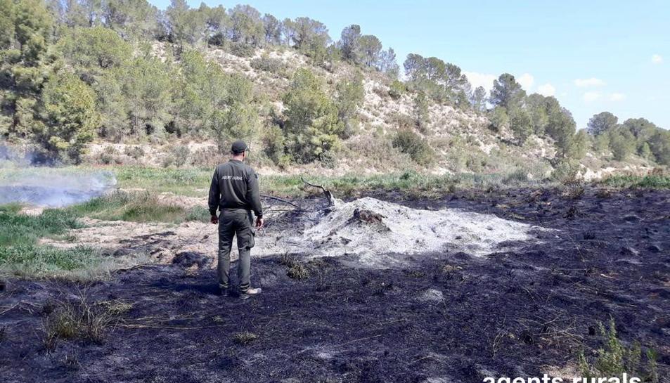 Un agent rural al lloc de l'incendi.