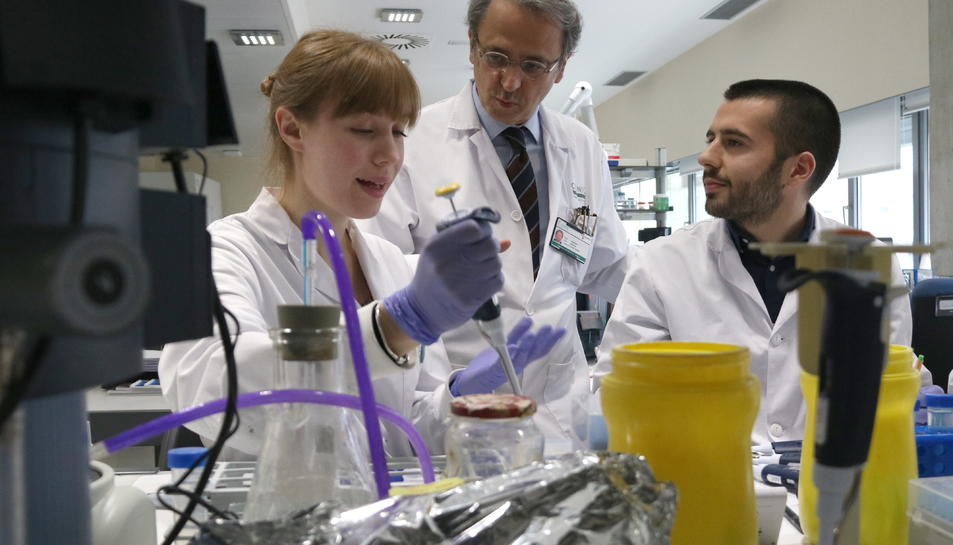 Imatge del cap del grup de recerca translacional en oncologia hepàtica, Josep Maria Llovet amb dos investigadors més de l'IDIBAPS.