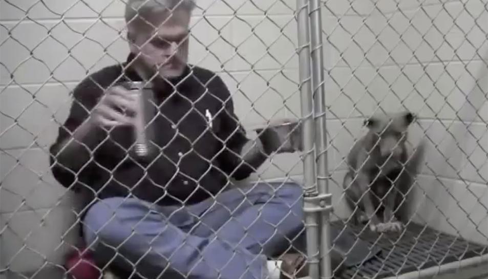 Captura d'imatge del vídeo del veterinari amb el gos.
