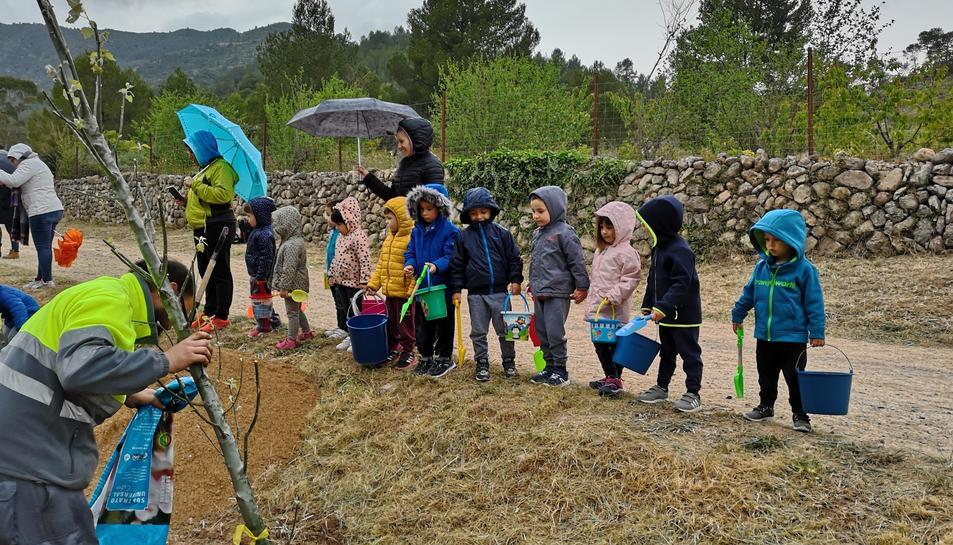 Una seixantena de nens han plantats diverses espècies durant la celebració.
