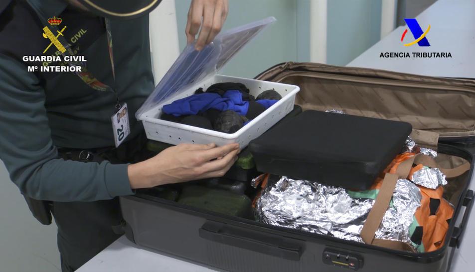 Les cries de tortuga amagades a l'equipatge d'un passatger a l'aeroport del Prat.