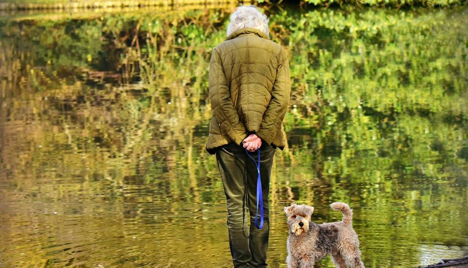Gairebé la meitat dels majors de 80 anys diuen sentir-se sols.