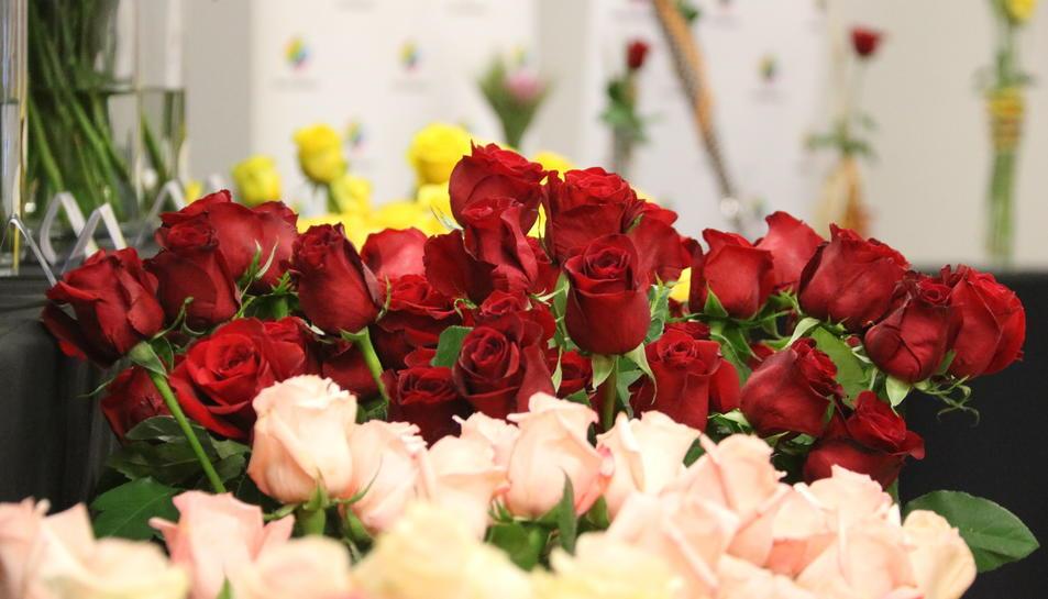 Imatge de roses vermelles i roses aquest abril de 2019 a Mercabarna.