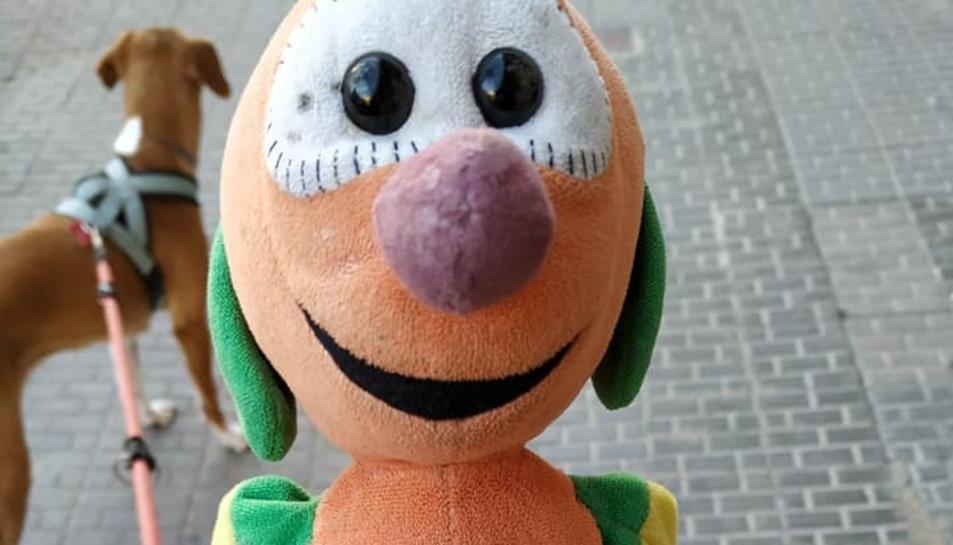 Imatge del nino del Mic trobat al carrer Pin i Soler.