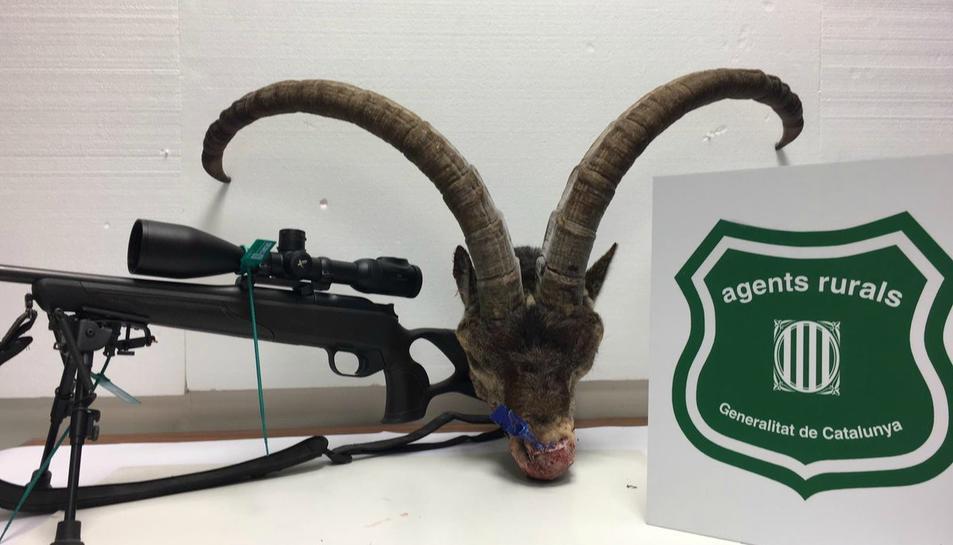 Imatge de l'arma i de l'exemplar de cabra comissat.