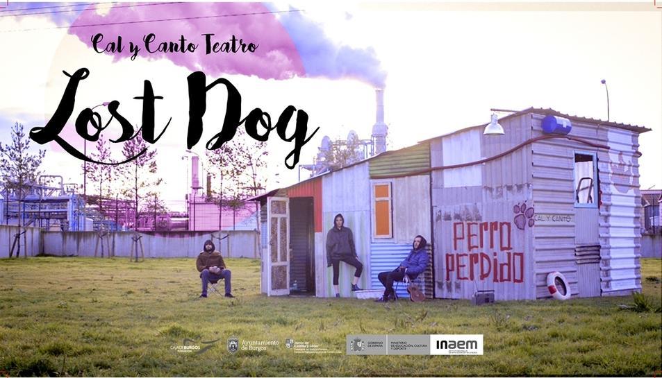 'Lost Dog... Perro perdido'és un espectacle de titelles i objectes fet en una barraca construïda amb materials reciclats.