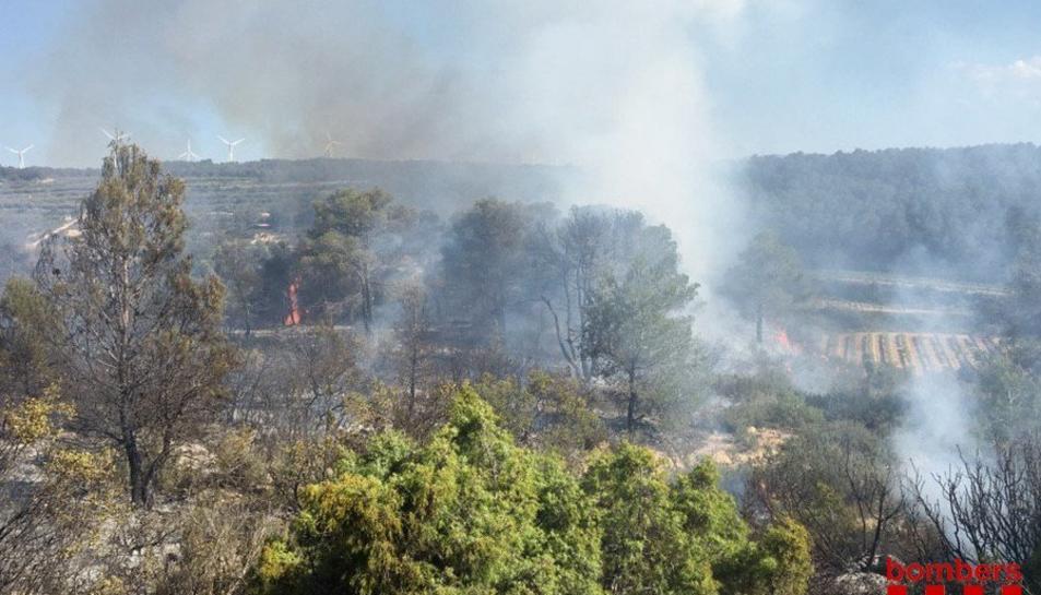 L'incendi ha afectat provisionalment una hectàrea de vegetació.