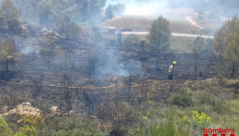 Els Bombers han donat per estabilitzat l'incendi cap a les 15 hores.