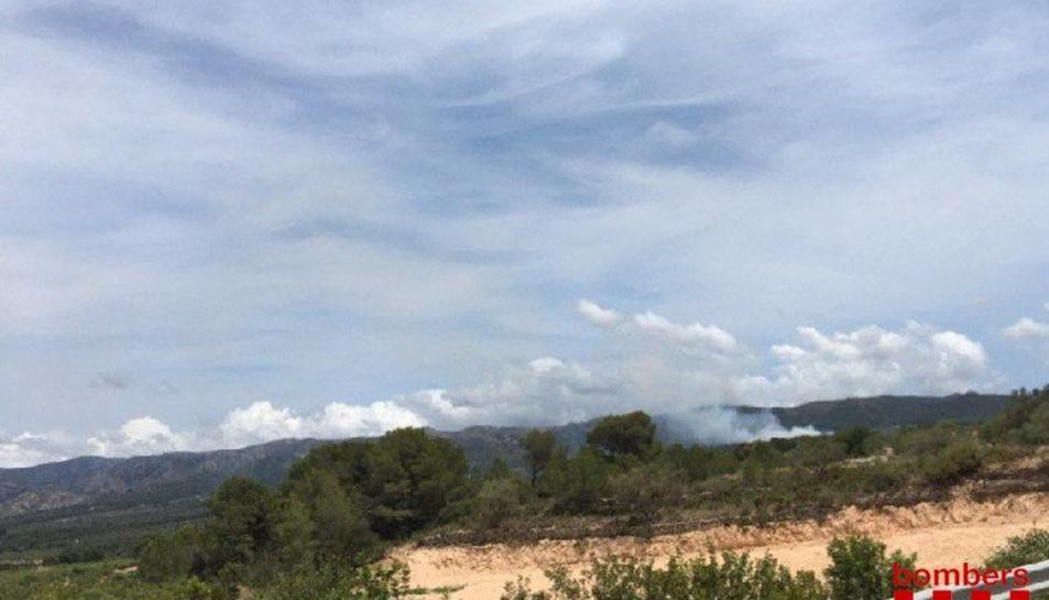 L'incendi forestal s'ha originat a la zona Burgans, entre Tivissa i Rasquera.