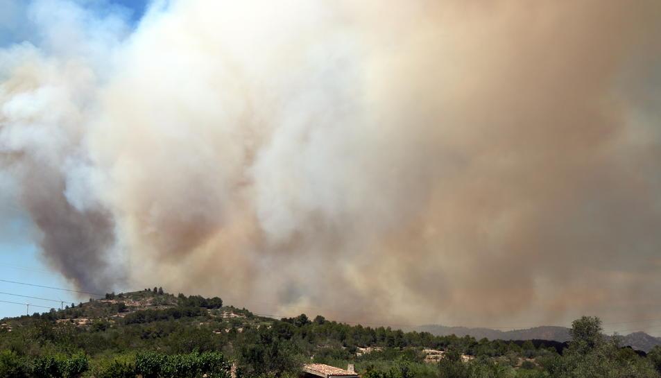 La columna de fum de l'incendi que s'ha declarat a la Collada del Perelló i que ja ha cremat 60 hectàrees de superfície forestal, el 10 de juny del 2019 (horitzontal).