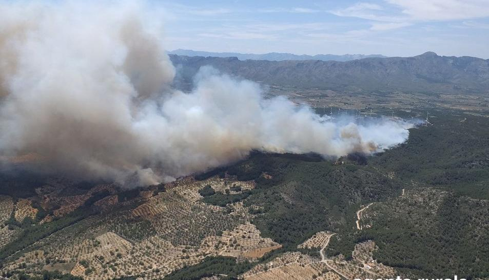L'incendi del Perelló afecta, de moment, una superfície d'unes 60 hectàrees aproximades.