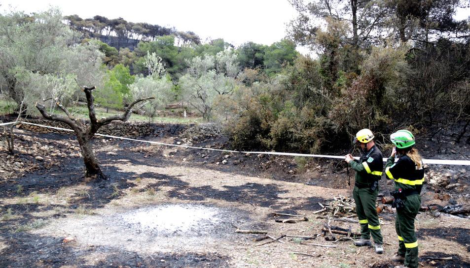 Dos agents rurals inspeccionant la foguera que hauria originat l'incendi del Perelló.