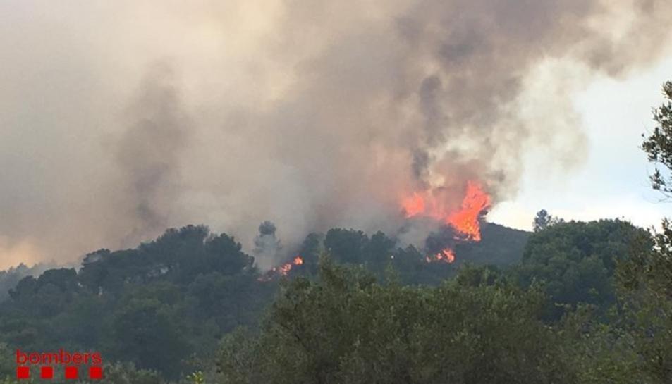 Imatge de l'incendi del Perelló.