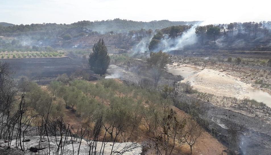 El foc ha cremat, provisisionalment, 14 hectàrees.