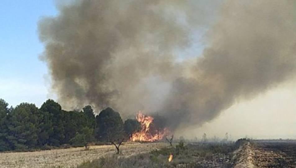 Els foc ha saltat el riu i afecta part del nord del Matarranya.