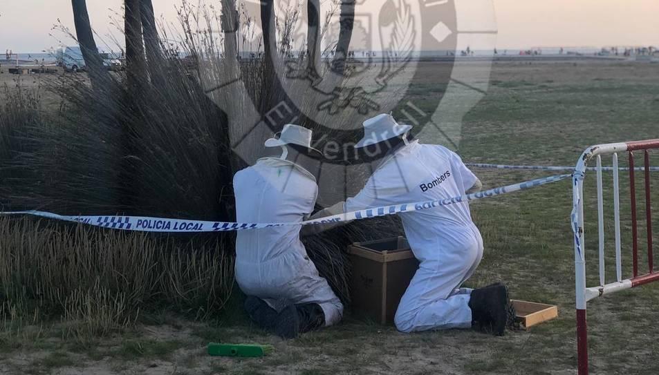 Dos bombers col·locant la capsa a la zona.