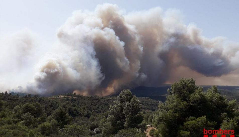 Imatge del flanc dret d'un incendi entre Vinebre i la Torre de l'Espanyol, a la Ribera d'Ebre, el 26 de juny del 2019. Pla general