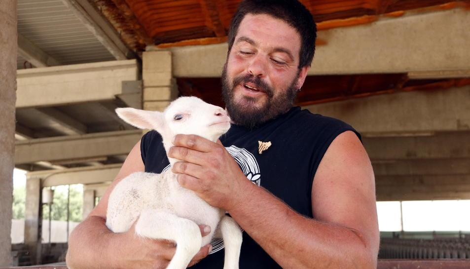 El ramader Abel Peraire, de Prats de Lluçanès, amb un dels xais de la seva explotació que ha nascut fa poc.