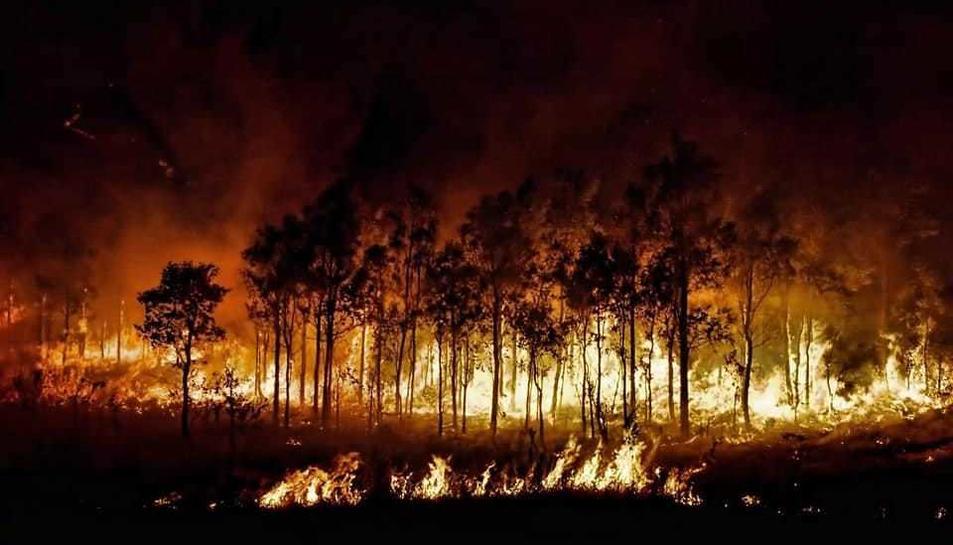 El foc, aquesta passada nit.