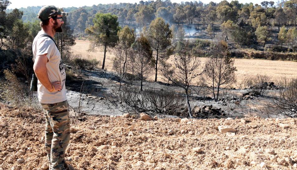 Un veí de Maials observa la zona afectada per l'incendi en aquest terme municipal.