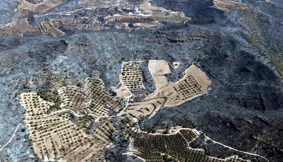 Vista aèria d'una zona agrícola i d'una construcció envoltades de zones cremades a l'incendi de la Ribera d'Ebre.