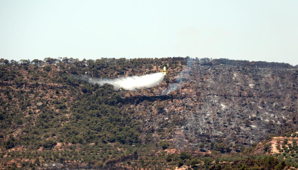 Un hidroavió descarrega aigua a la zona de l'incendi, entre els termes municipals de Bovera i Flix, el 28 de juny del 2019
