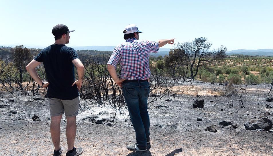 Una veïns observant els danys ocasionats pel foc a la Ribera d'Ebre.