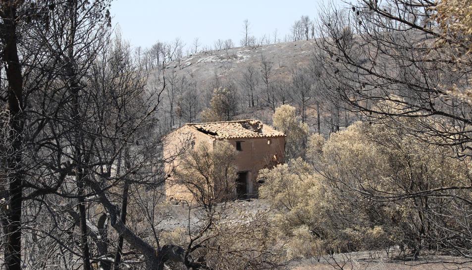 Un edifici abandonat amb els efectes de l'incendi de la Ribera d'Ebre al fons entre la Palma i Vinebre