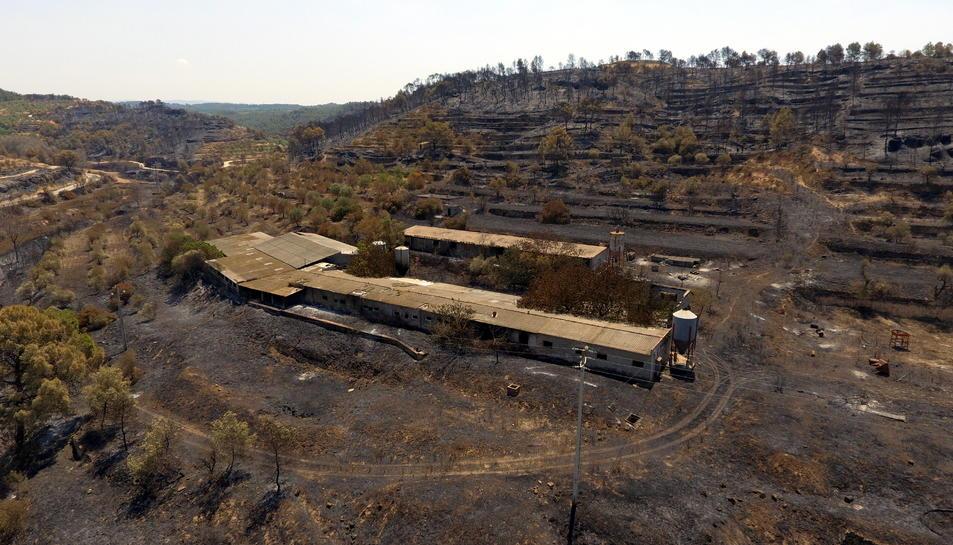Imatge aèria captada amb dron de l'incendi de la Ribera d'Ebre a la zona situada entre la Palma d'Ebre i Flix on es pot veure una granja afectada pel foc.