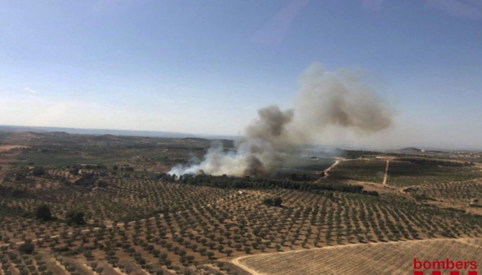Imatge de l'incendi de la Ribera d'Ebre.