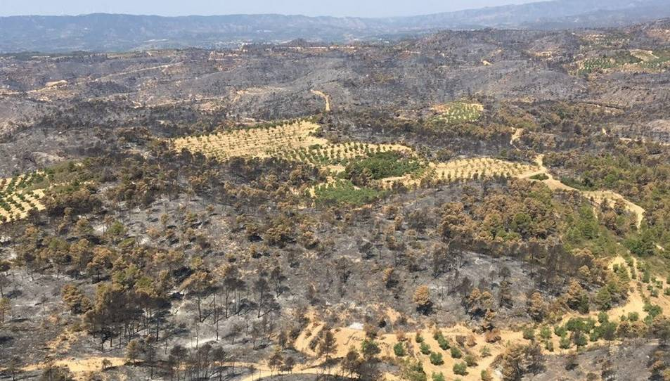 Els Bombers treballen especialment per protegir les zones que no es van cremar.