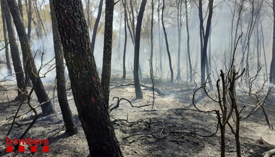 La zona cremada per l'incendi