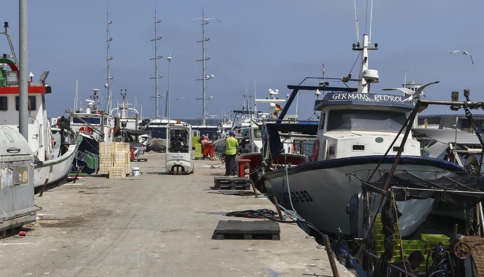 Una imatge del moll de Tarragona, el passat  1 de juliol.