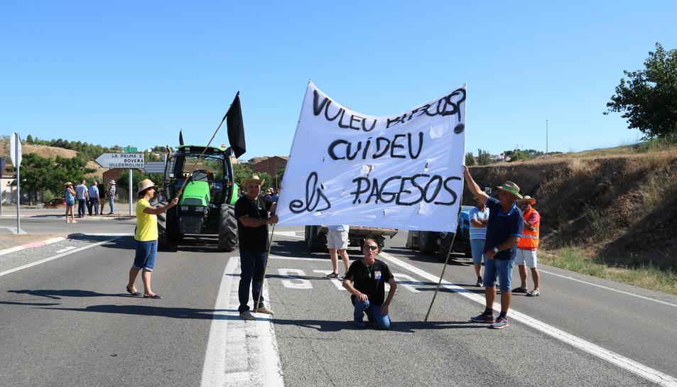 Pla general dels manifestants que han participat en el tall de carretera de la C-12 a Flix.