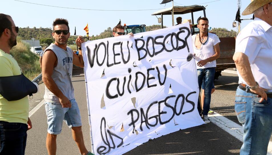 Primer pla d'una grup de pagesos tallant la carretera C-12 a Flix amb una pancarta que reclama un millor tracte per al sector.
