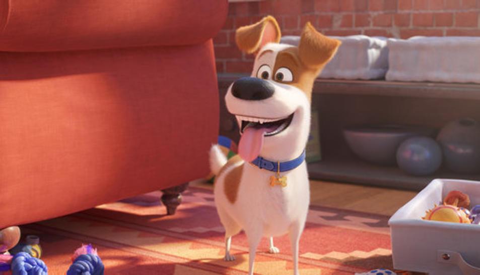 El protagonista de 'Mascotes 2', el gos Max, a la segona part de la seqüela d'animació.