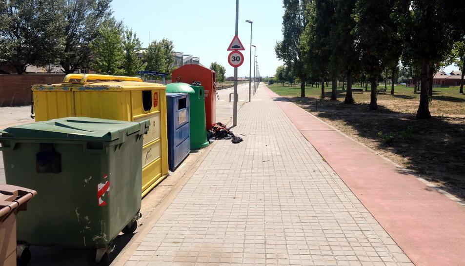 La zona de contenidors del Pla de l'Ametller on el gos hauria atacat la dona.