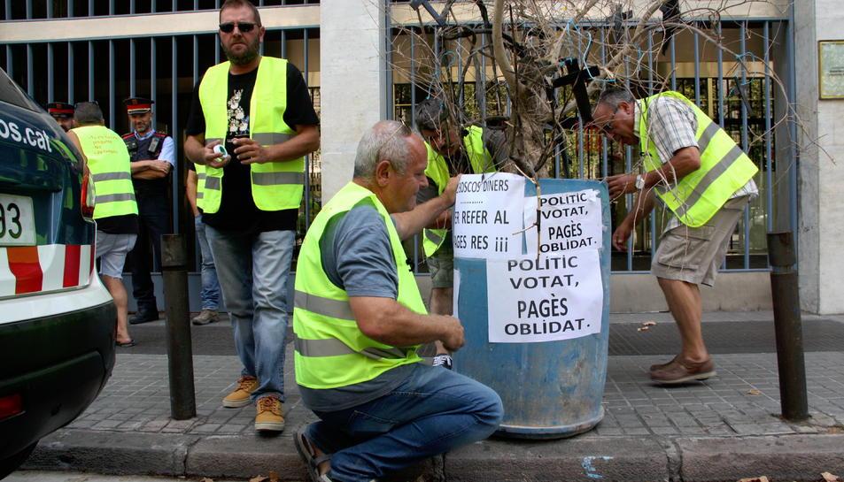 Pla obert de pagesos lleidatans col·locant una olivera davant de la Conselleria d'Agricultura.