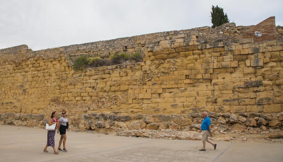 A la plaça de l'Antic Escorxador, els arbustos creixen sense control i posen en perill l'estructura de la Muralla romana