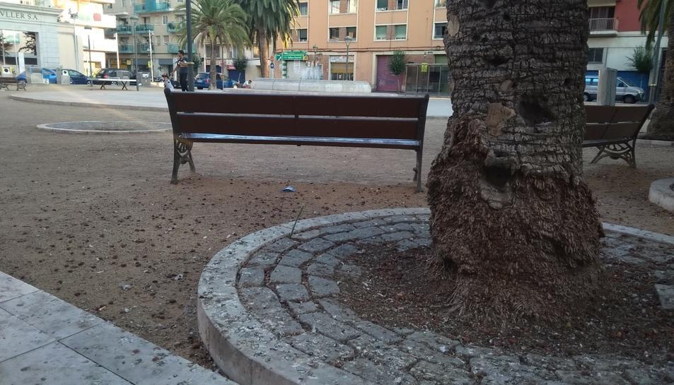 Els excrements de colom ocupen, cada dia, bona part de la plaça dels Infants.