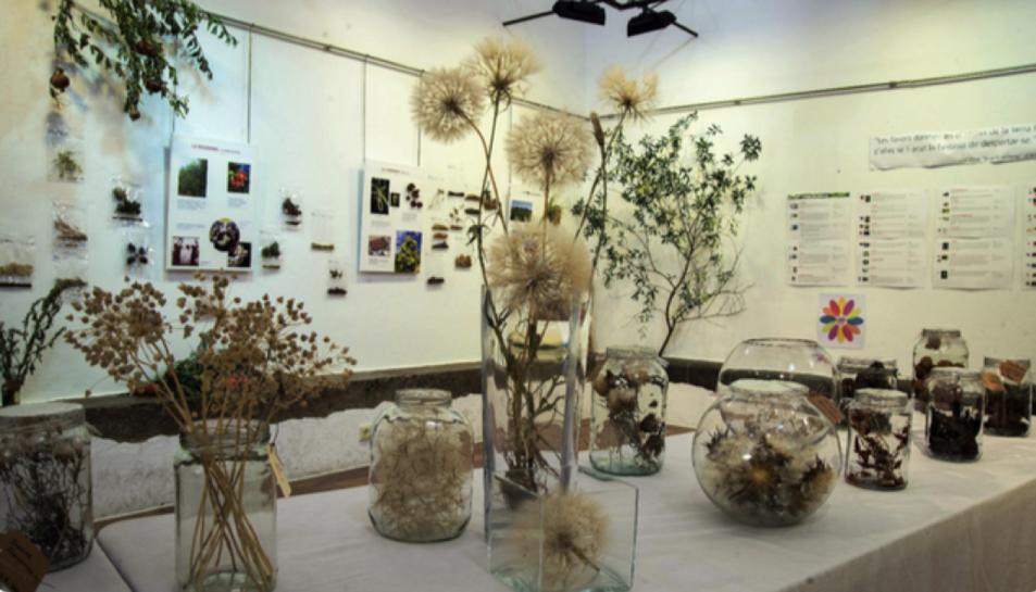 L'exposició es pot veure del 3 al 27 de setembre.